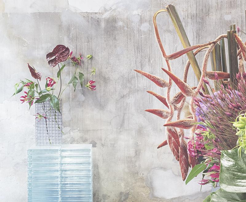 TABLEAU er blomsternes nye sort