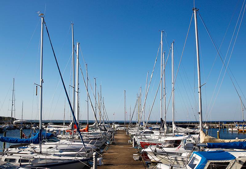 Rungsted Havn er liv og glade dage  – og aftner