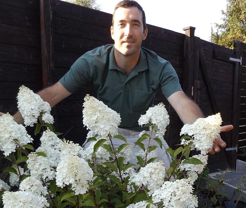 Viola Garden i Gentofte tager sig af din have