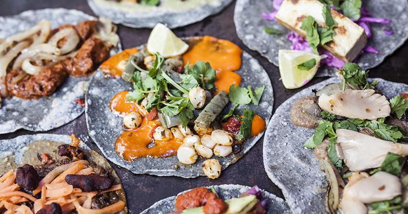 Blue Taco er smagen af Mexico i hjertet af Kgs lyngby